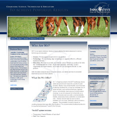 Innovative Equine Technologies