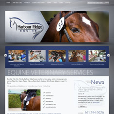 Harbour Ridge Equine
