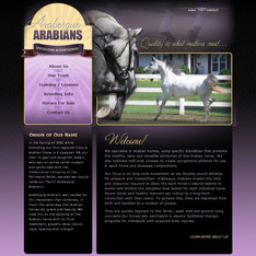 Arabesque Arabians