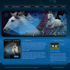 Andalusian Stallion: Dylan Casimoro
