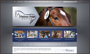 Harbour Ridge Equine Veterinarian Site Designed by Equine Originals